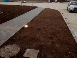 posejana-trava-4